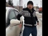 Походка людей на разных авто