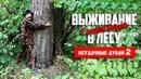 Выживание в лесу с дядей Борей Приколы на охоте Неудачные кадры 2