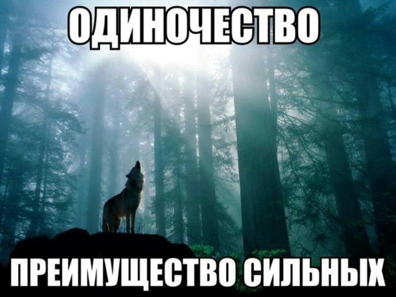 Артем Кобрик   Могилёв