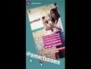 Smarty Paws via Instagram Stories 2