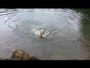 Девочки купаются.mp4