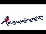 Поздравление с Новым Годом от команды #МолодежкаОНФ Мурманской области