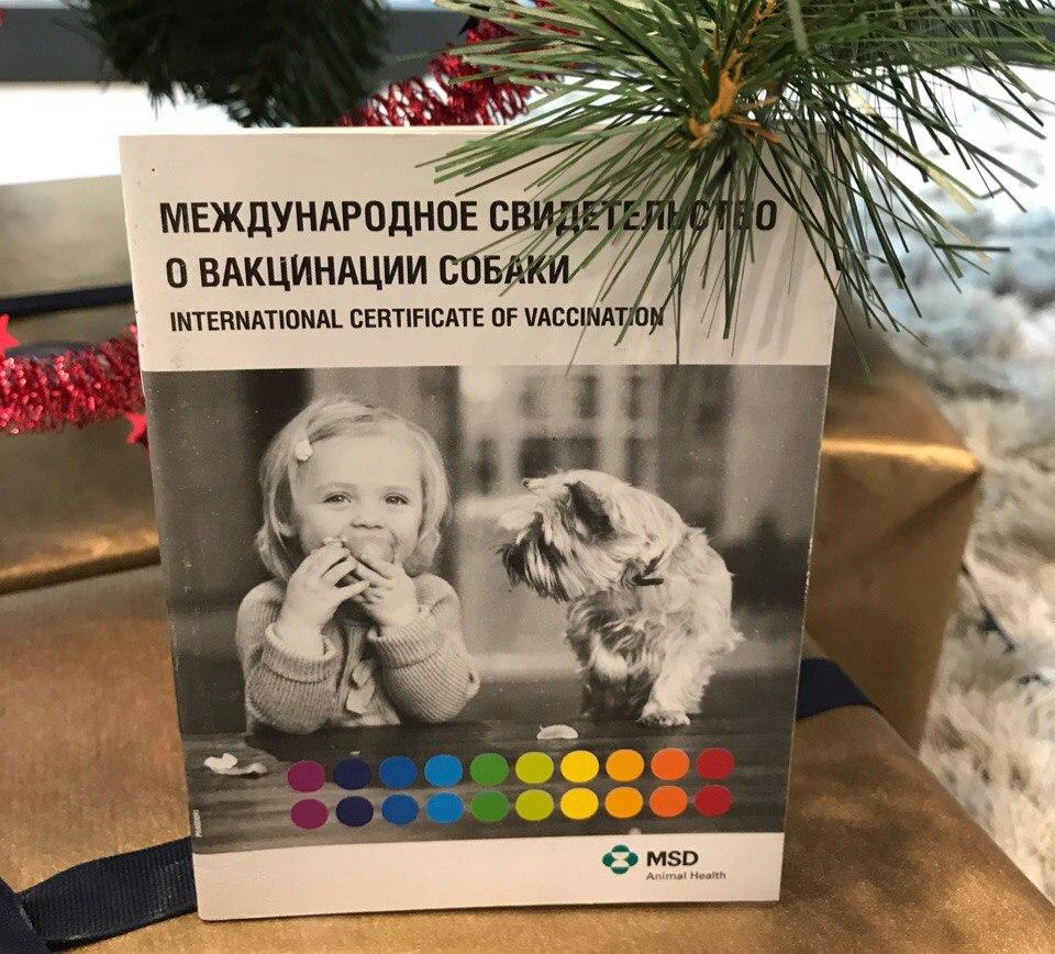купить ветпаспорт для собаки с прививками, международный ветпаспорт для собаки купить