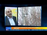 В Дагестане отключили все камеры фиксации нарушений ПДД