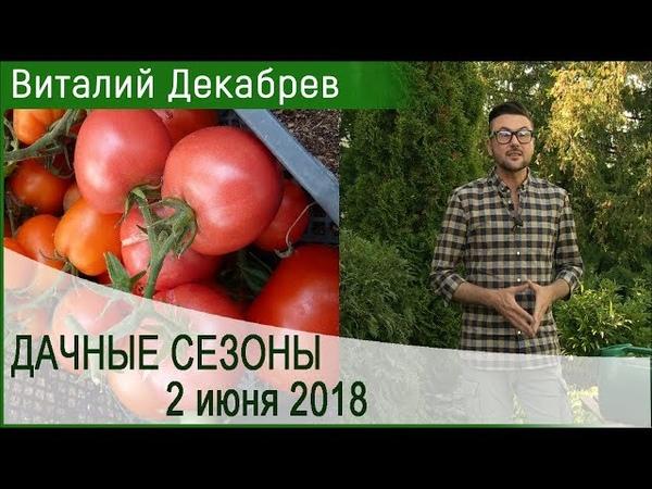 Дачные сезоны с Виталием Декабревым 2 июня 2018