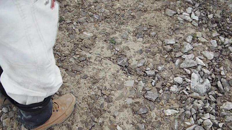 Необычные ловушки в Арктической экспедиции или зыбкая глина,