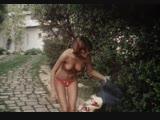 Греческая смоковница: Плод созрел - (Комедия, Мелодрама)*(1976)