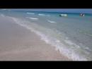 АРИША Тунис 2о18