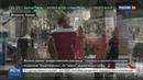 Новости на Россия 24 • Рождественская ёлка в Монреале завела собственный Twitter