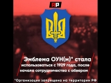 Историка из Украины в эфире ТВЦ уличили в ношении символа националистов, убивавших евреев