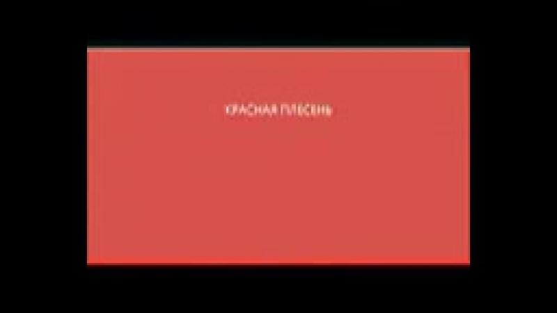 Красная Плесень_=Плачет Девушка с Автоматом=