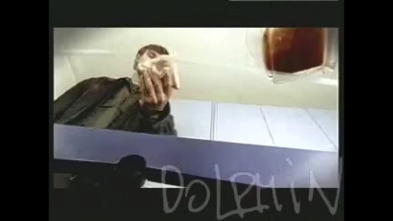 Дельфин Dolphin Дилер