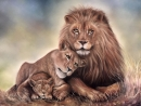 Coitus interruptus Rhino puts a damper on lions romantic date