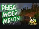 РУССКАЯ РЫБАЛКА 4 | RUSSIAN FISHING 4 | ФИДЕР И СПИННИНГ