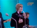 Hermans_Hermits - Theres a kind of hush
