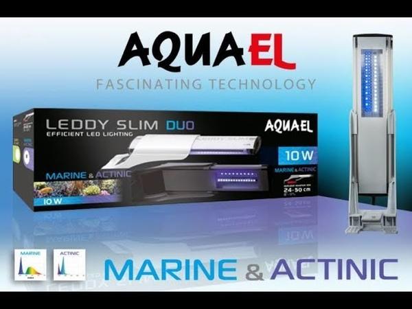 ЛЕД лампы в аквариуме AQUAEL LEDDY SLIM