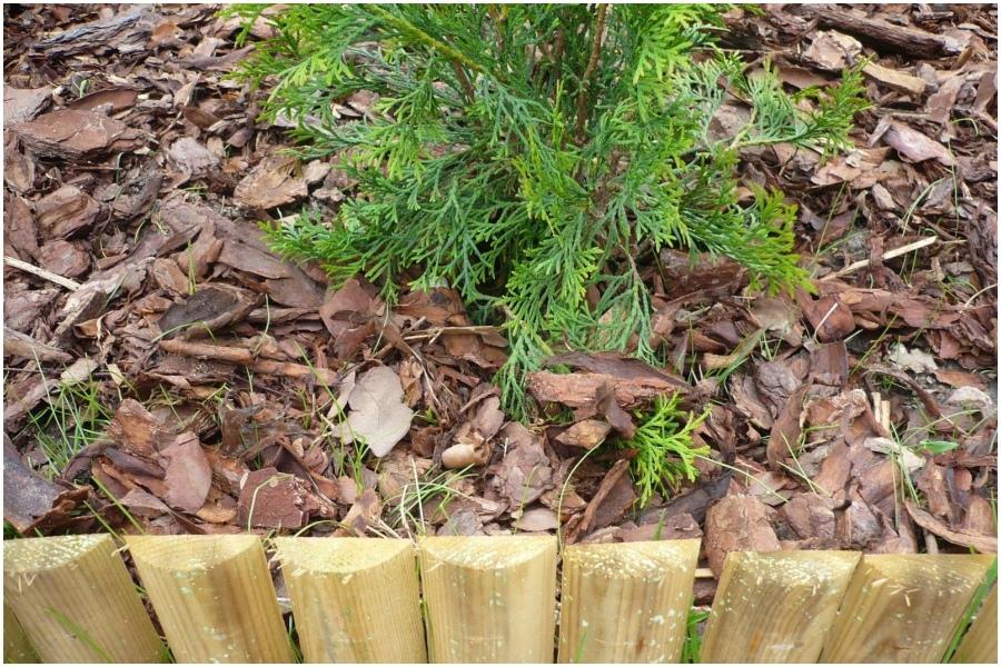 Мульча из дубовых листьев и коры