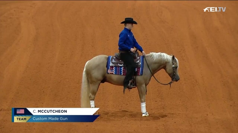 Fédération Equestre Internationale Cade McCutcheon FEI World Equestrian Games Tryon 2018