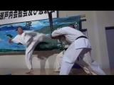 Кёкусинкай карате - Сильнейшее Карате в мире. Подготовка бойца. https://vk.com/oyama_mas