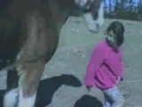 You-mess-with-the-horse-you-get-full-force.mp4