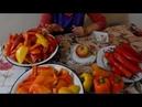 Консервация Перец с яблоками