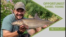 Opportunist Barbel fishing