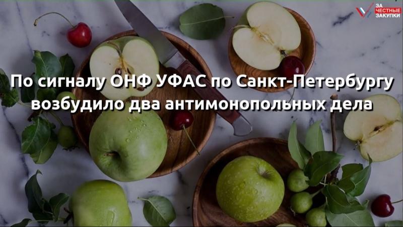 По сигналу ОНФ УФАС по Санкт-Петербургу возбудило два антимонопольных дела