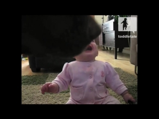 Baby Girl Laughing Hysterically at Dog Eating Popcorn _ Laughing Babies _ toddletale