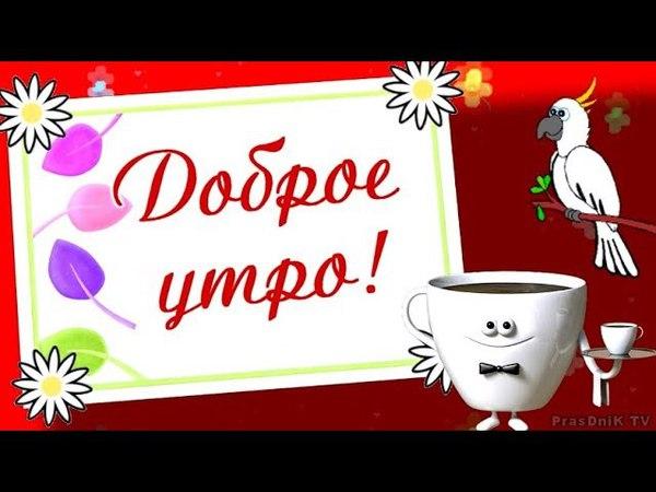 Видео пожелание с добрым утром! Доброе утро! Хорошего дня!