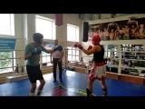 Григоренко Глеб - Белинский Станислав раздел кик-лайт вк до 63 кг