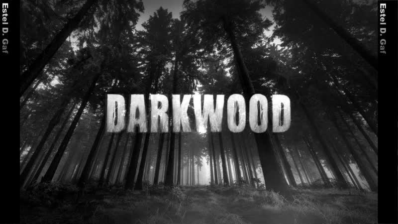 Darkwood, Фонарь, дикарь, собака. 11 серия