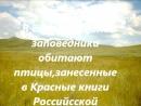Виртуальная фотовыставка Жемчужина южного Забайкалья