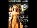 Ангелы и насекомые _ Angels and Insects (1995) Великобритания, США