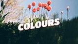 Zeus X Crona &amp Denis Elezi &amp Chris Linton - Colours (Lyrics Video) No Copyright