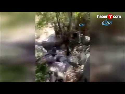 PKK'LI TERÖRİSTLERİN YAKALANIŞ ANLARI