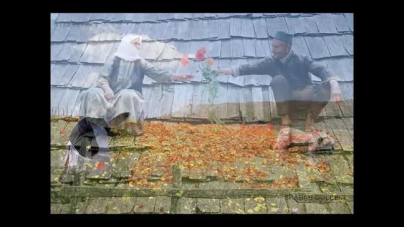 Талышский мугам в исполнении Иранской талышки