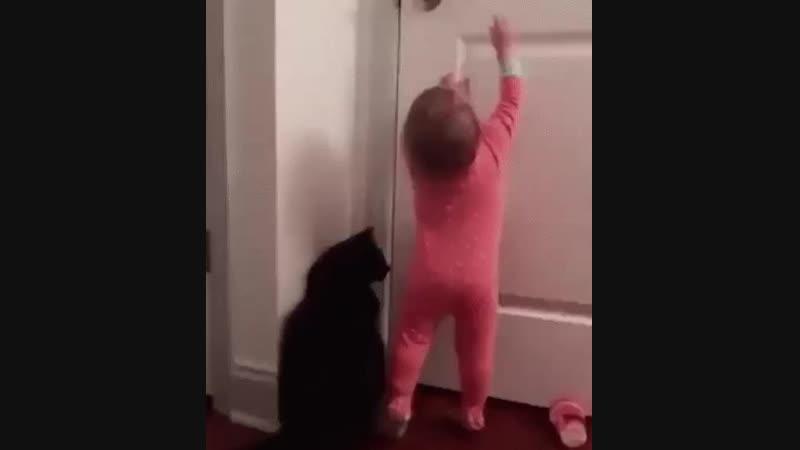 Эта дверь точно на кухню!