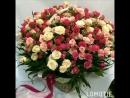 VID_115500430_212313_972.mp4