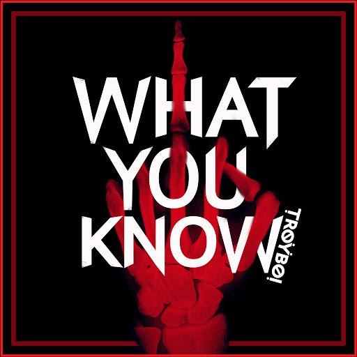TroyBoi альбом What You Know