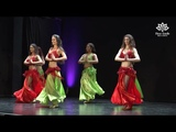 NEW! Drum Solo Belly Dance by Fleur Estelle Dance Company to SAIDA DRUM (Matias Hazrum)