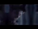 The Vampire Diaries Teen Wolf The Originals The 100