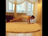 Эффективные и простые упражнения для здоровой спины и правильной осанки