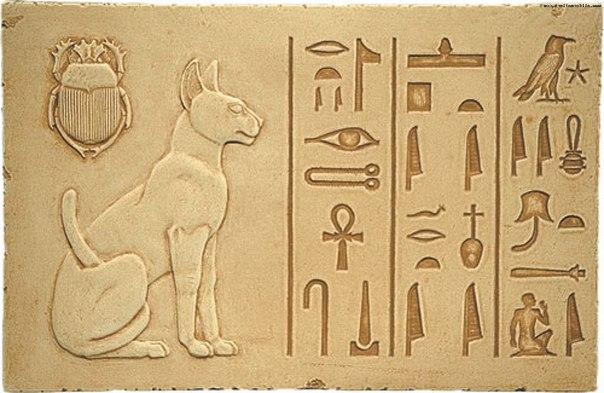 Почему пока люди специально одомашнивали собак, кошки одомашнили себя самостоятельно Собаки были одними из первых домашних животных, которых человек приручил. Считается, что охотники-собиратели