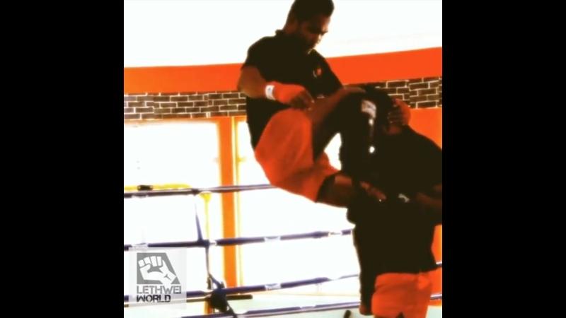 Мэтт Браун Бирманский бокс такой офигенный