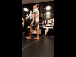 разминка UFC 229
