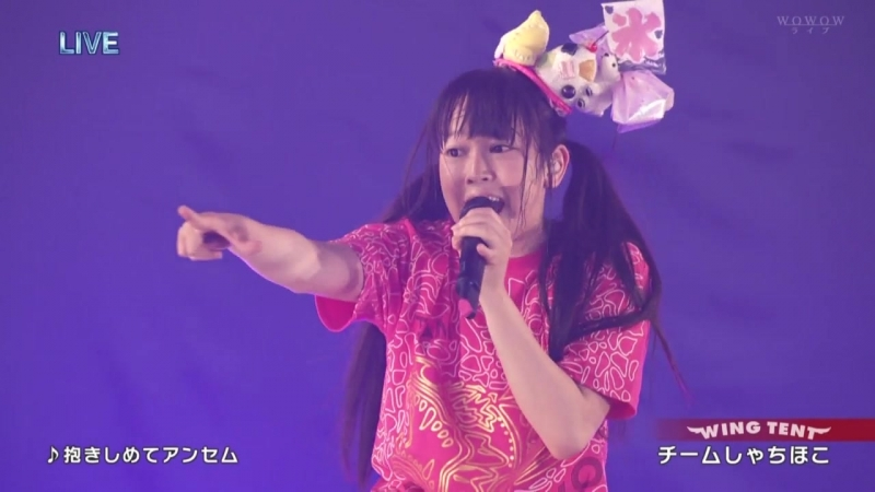 Team Syachihoko Rock in Japan Fes 2014 Day 3 Wowow Live 20140809