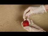 Как покрасить яйца на Пасху. 5 оригинальных способов окраски яиц. Готовим дома. StarMediaKids