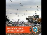 Зачем Швеция скупает мусор?