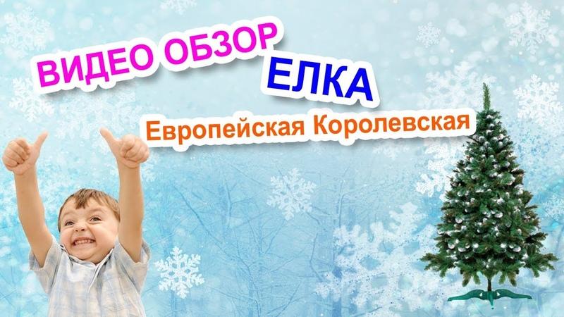 Искусственные елки в Тольятти. Видео обзор елка Европейская Королевская.