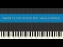 Bagatelle in A minor No 25 Fur Elise Ludwig van Beethoven Piano Tutorial